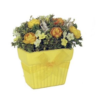 Yellow Pot with Organza Ribbon and Dry Flowers New Wish Floral