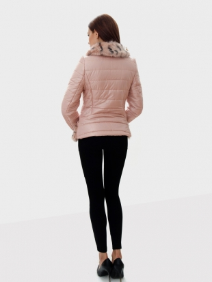 Sport Elegant Short Jacket with Collar 2171